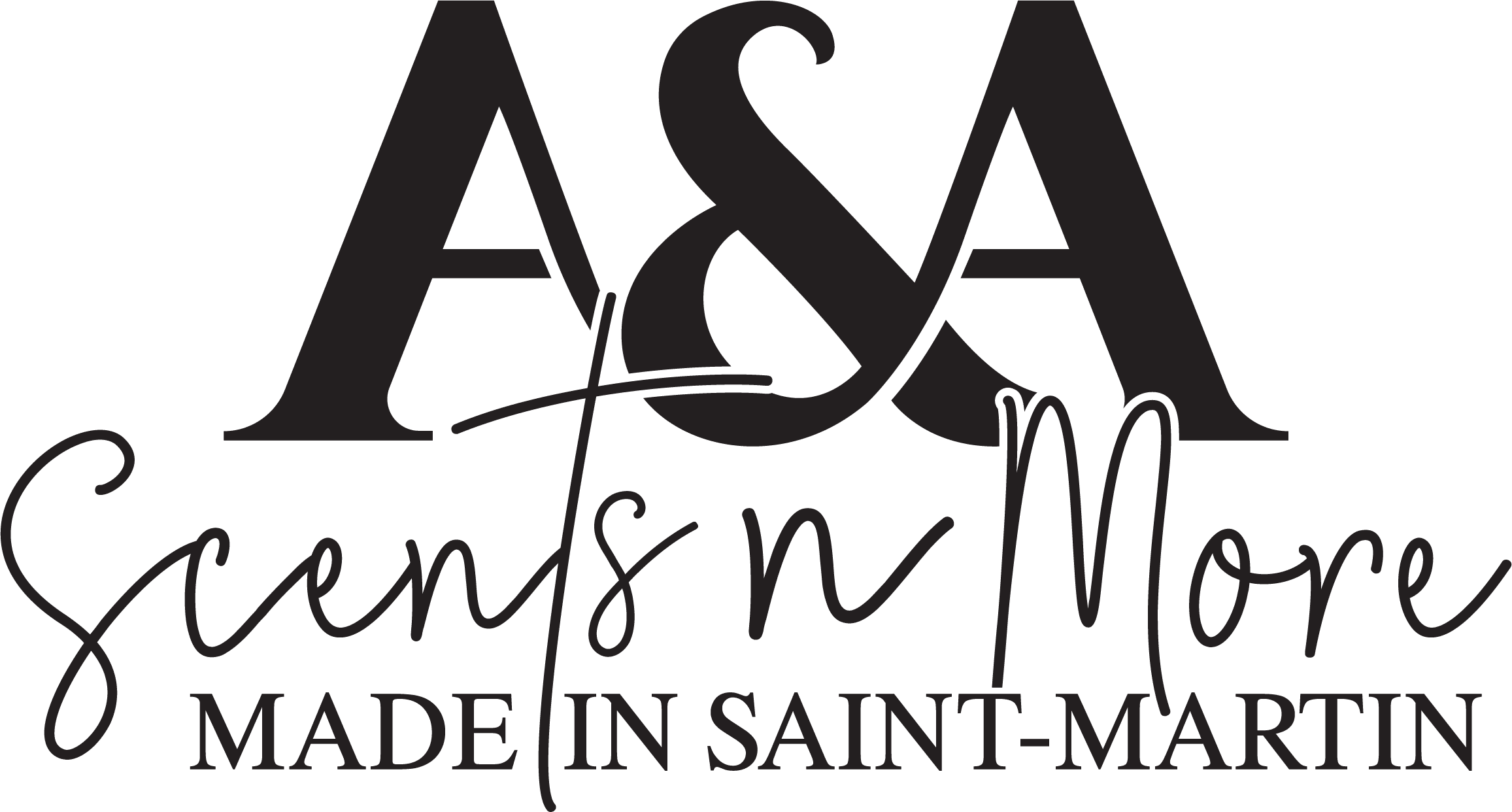 aasnm_logo